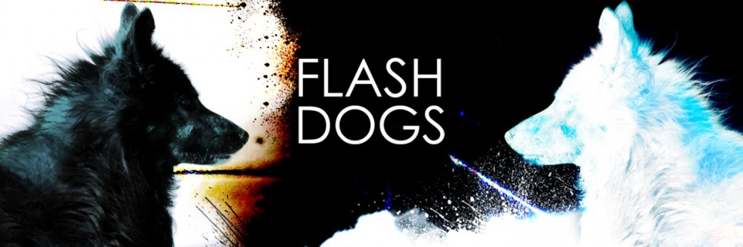 cropped-twitter-flashdogs